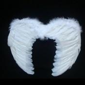 Крылья ангела с пухом